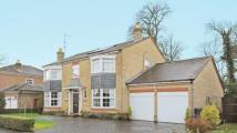 5 bed Detached house in Devonshire Park, Reading...
