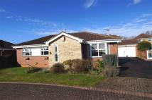 Detached Bungalow for sale in Whitelands, Driffield...
