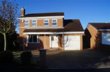 4 bedroom Detached house to rent in Whitelands, Driffield...