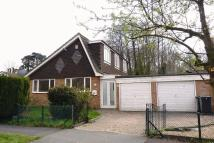 Chalet to rent in Timberlane, Purbrook, PO7