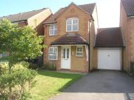 3 bedroom house to rent in Forsythia Close...