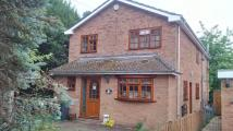 4 bedroom Detached property to rent in Church Walk, Cranfield...
