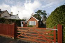 Detached Bungalow in Two Bedroom Detached...