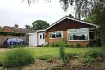 Detached Bungalow in Eveley Close, Whitehill...
