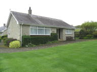 Bungalow for sale in 7 Wern Fach...