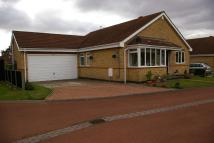 Bungalow for sale in 32 Highfield...