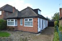 Franklyn Road Detached Bungalow for sale