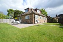 4 bed Detached Bungalow in Sidney Road...
