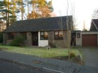 Bungalow in The Rise, Crowthorne...
