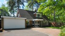 3 bedroom Detached property for sale in Salamanca, Crowthorne...