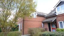1 bedroom Flat in Seymour Court...