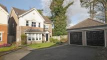Detached house for sale in Duchess Close...