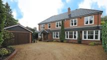 6 bed Detached property in New Wokingham Road...