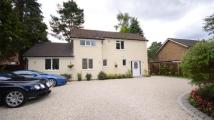 3 bed Detached house in Dukes Ride, Crowthorne...