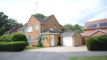 3 bedroom semi detached home for sale in Hinton Drive, Crowthorne...