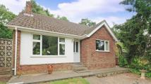 3 bed Bungalow in Greenwood Road...
