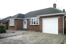 2 bed Detached Bungalow in CROMLEY ROAD, HIGH LANE...