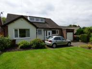 Bungalow to rent in ANDREW LANE, HIGH LANE...