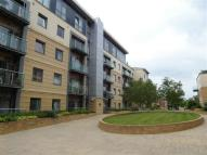 1 bedroom Apartment in Grove Park Oval...