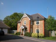 6 bed Detached house to rent in Redwood Place...