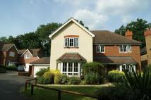 Detached property to rent in Howards Wood Drive...
