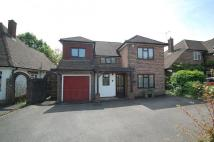 Detached property to rent in Birchdale...