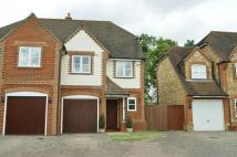 semi detached house to rent in Kemsley Chase...