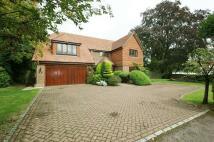 5 bedroom Detached house to rent in Hibberts Way...