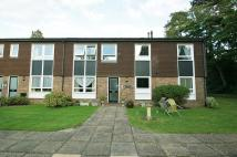 Flat to rent in Larchmoor Park...