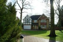 5 bed Detached property in The Spinney...