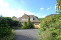 Detached house to rent in Daleside, Gerrards Cross...