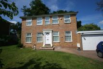 Illingworth Detached house to rent
