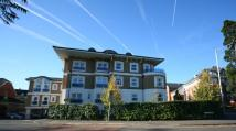 Flat to rent in Dene House, Frances Road...