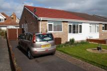 Semi-Detached Bungalow to rent in Lapwing Gardens...