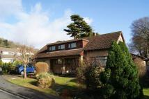 5 bed Detached Bungalow in Forest Drive...