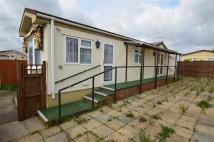 Detached Bungalow for sale in Stevenage