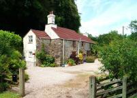 Cottage in Newbridge (Near...