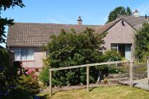 3 bedroom Detached Bungalow for sale in Tavistock