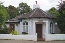 Detached property in Tavistock
