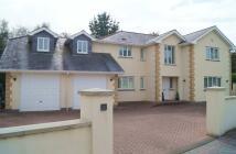 5 bed Detached house in Drakewalls, Gunnislake