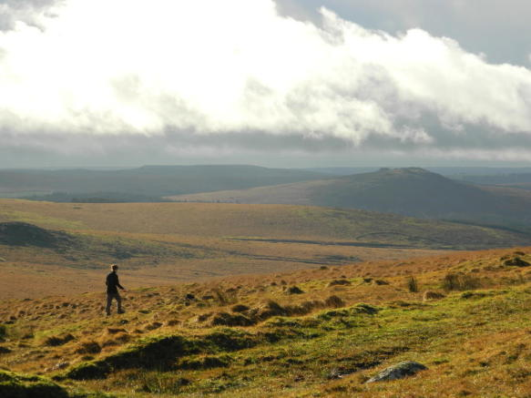 DARTMOOR WALKS