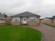 3 bedroom Bungalow to rent in Meadowhead Road, Plains...