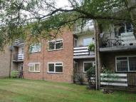 2 bedroom Apartment to rent in 2 bedroom Ground Floor...