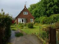 3 bedroom Detached Bungalow for sale in Main Road, Dovercourt...