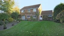 Detached house in Primrose Lane, Winnersh...