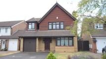 Detached home for sale in Goldsmith Close...