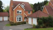 Attwood Drive Detached house for sale