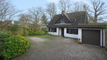 Old Woosehill Lane Detached house for sale