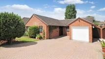 Bungalow for sale in Drome Path, Winnersh...