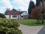 Detached Bungalow to rent in Crewe Road, Shavington